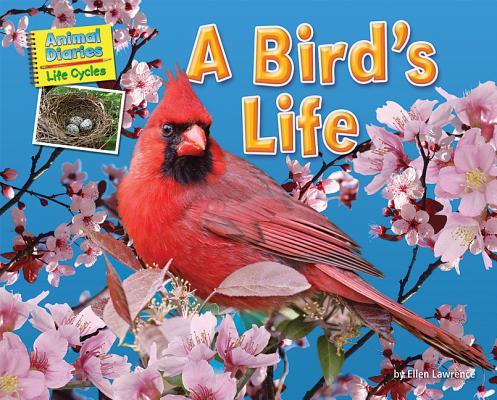 A Bird+ås Life By Lawrence, Ellen